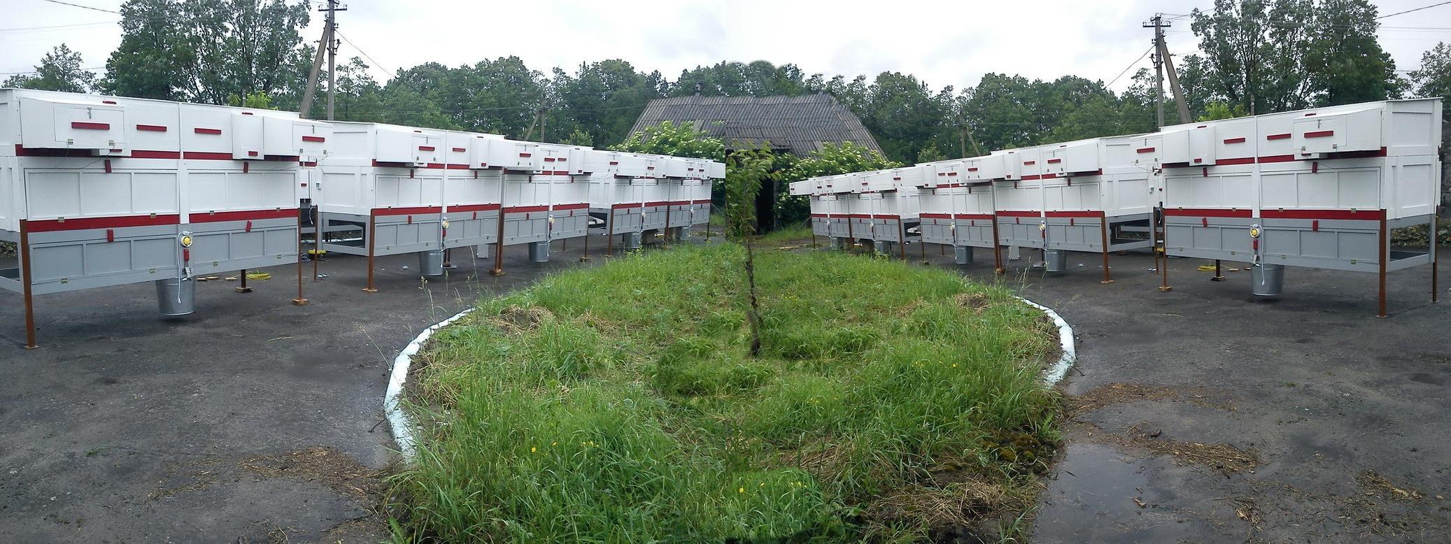 Öko-Kaninchen-Farmen zwecks Erzeugung vom puren Kaninchenfleisch